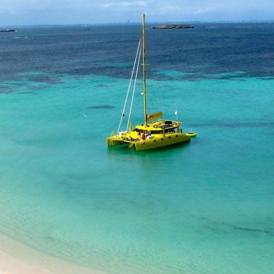 rottnest island eco tour