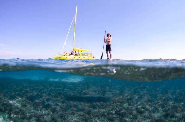 SUP, snorkel, Rottnest Island